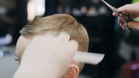 Professional Hairdresser Makes A New Haircut To The Little Boy